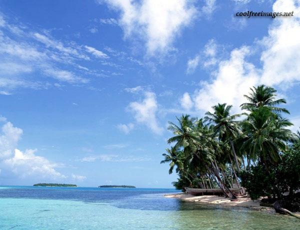 Mesmerizing Beach Images