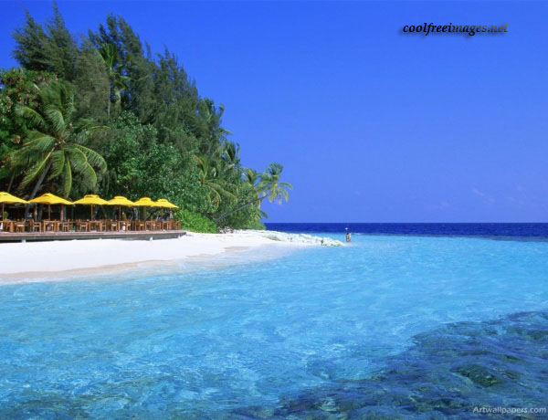 Best Beach Pictures