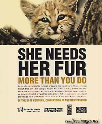Cause: She Needs Her Fur More Than You Do