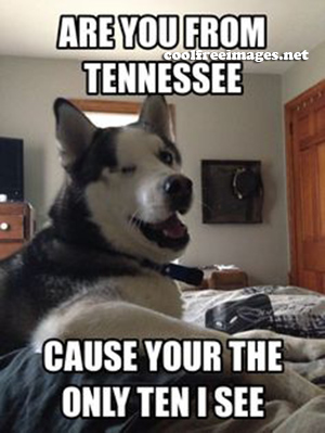 Free Dog PickUp Lines Pictures - Are you from Tennessee cause your the only Ten i see