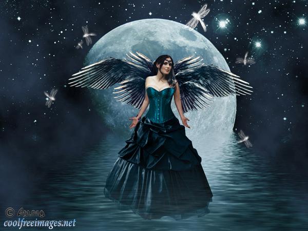 Online Fairies Images