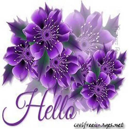 Best Hi & Hello Images
