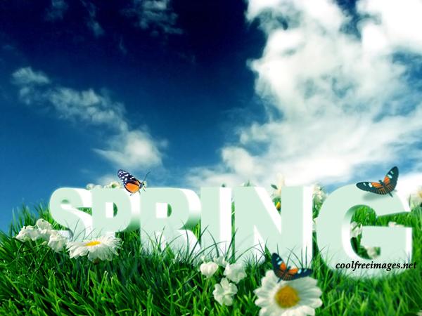 Best Spring Break Images